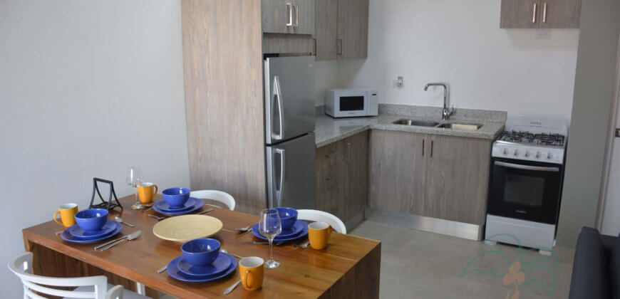 Beautifully Remodeled Condos with fantastic ocean view